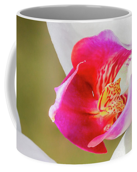 2015 Coffee Mug featuring the photograph Pink Orchid by Photography Wrap
