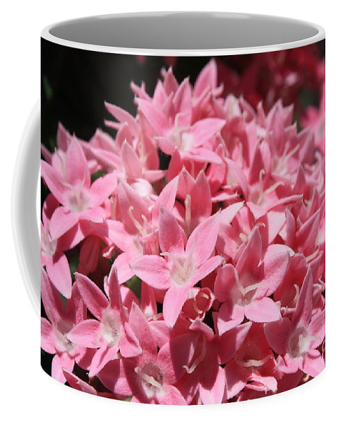Pink Pentas Coffee Mug featuring the photograph Pink Pentas Beauties by Carol Groenen