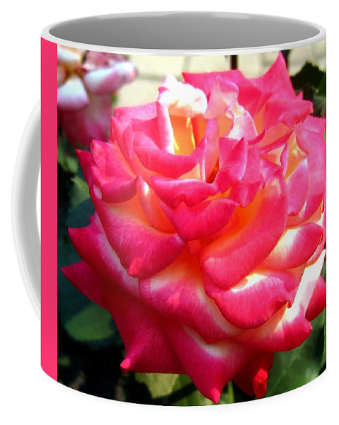 Rose Coffee Mug featuring the photograph Pink Perfection by Will Borden