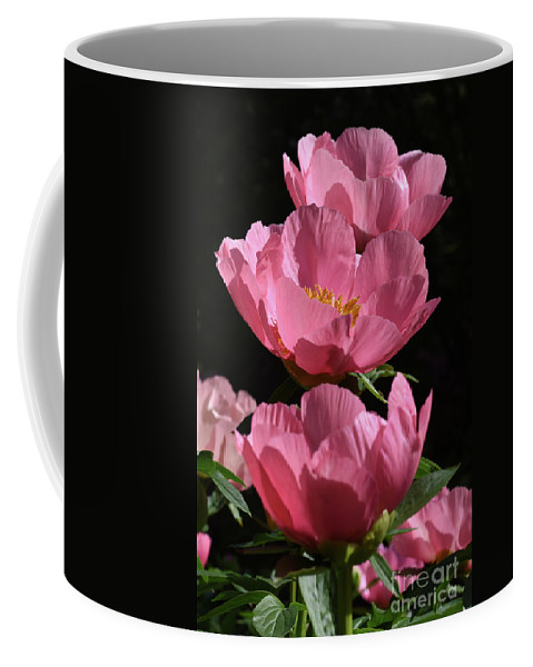 Peony Coffee Mug featuring the photograph Pink Perspective 0552 by Terri Winkler