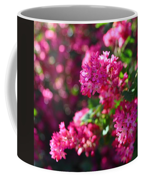 Flowering Currant Coffee Mug featuring the photograph Pink Profusion 1 by Mo Barton