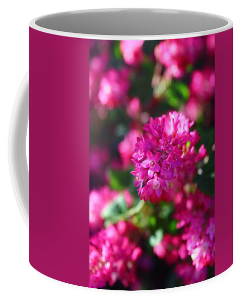 Flowering Currant Coffee Mug featuring the photograph Pink Profusion 2 by Mo Barton