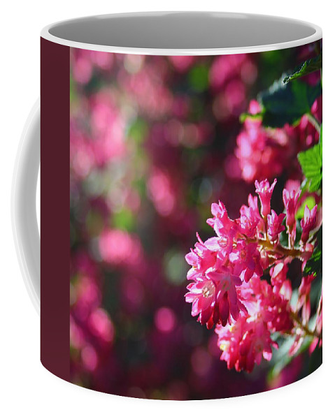 Flowering Currant Coffee Mug featuring the photograph Pink Profusion 3 by Mo Barton