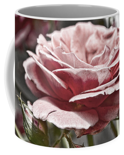 Pink Coffee Mug featuring the photograph Pink Rose Faded by Sharon Popek