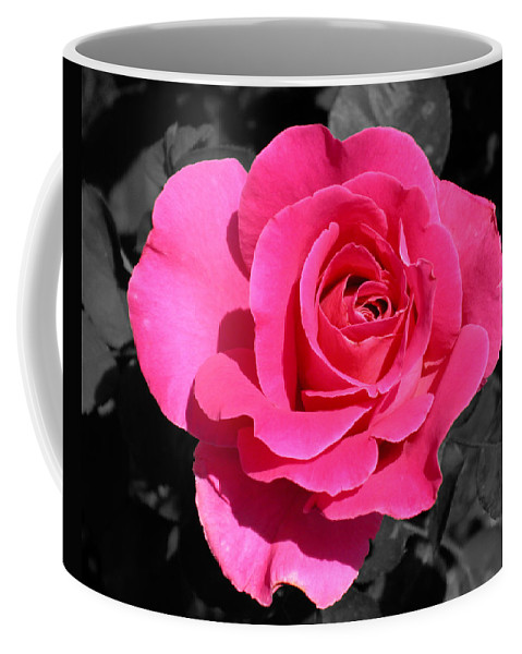 Pink Coffee Mug featuring the photograph Perfect Pink Rose by Michael Bessler