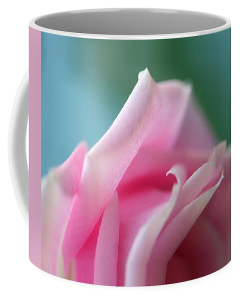 Norah Silva Coffee Mug featuring the photograph Pink Rose by Norah Holsten