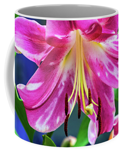 Flower Coffee Mug featuring the photograph Pink Rules 2 - Paint by Steve Harrington
