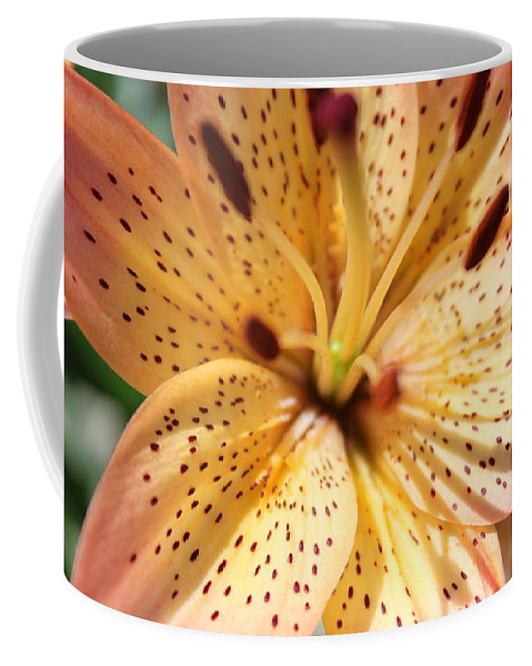 Lilly Coffee Mug featuring the photograph Pink Spotted Lilly by Lauri Novak