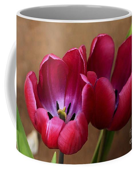 Pink Coffee Mug featuring the photograph Pink Tulip Pair by Deborah Benoit
