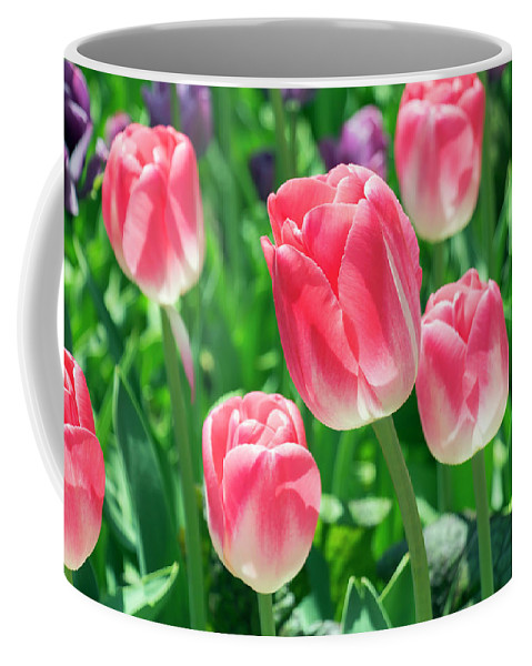 Flower Coffee Mug featuring the photograph Pink Tulips by Dawn Cavalieri