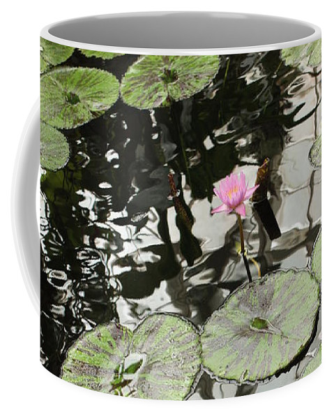 Ond Coffee Mug featuring the photograph Pink Water Lily by Carol Groenen