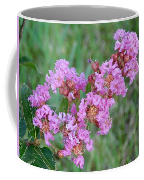 Flower Coffee Mug featuring the photograph Pinkish Red Flower Bloom Close Up by Gregory Farmer