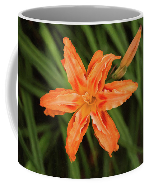 Flowers Coffee Mug featuring the photograph Pizzazz by Sue Collura