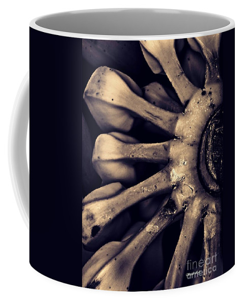 Plantain Coffee Mug featuring the photograph Plantains 2 Sepia by Sarah Loft