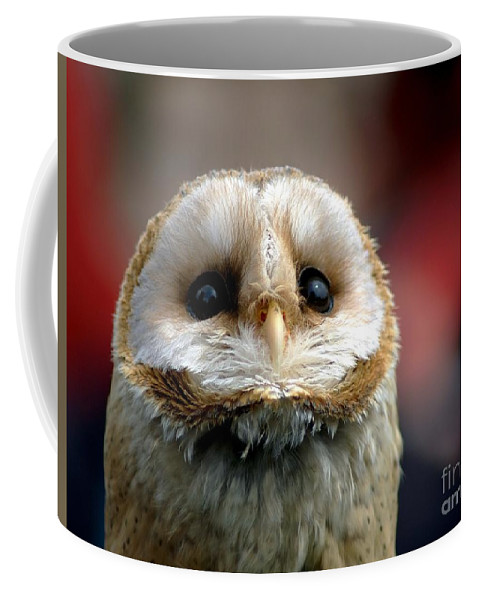 Wildlife Coffee Mug featuring the photograph Please by Jacky Gerritsen