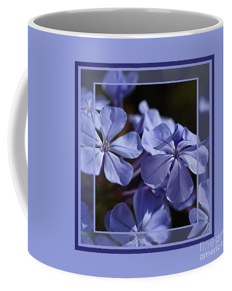 Blue Coffee Mug featuring the photograph Plumbago Dance With Design by Joy Watson