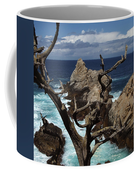 Carmel Coffee Mug featuring the photograph Point Lobos Rocks And Branches by Charlene Mitchell