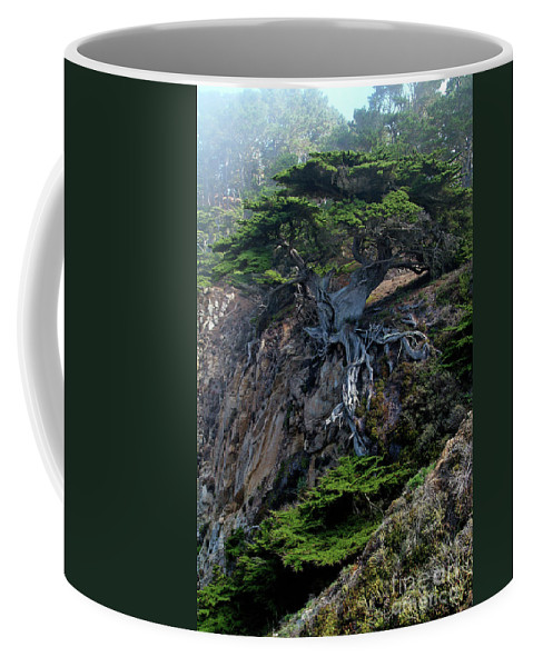 Landscape Coffee Mug featuring the photograph Point Lobos Veteran Cypress Tree by Charlene Mitchell