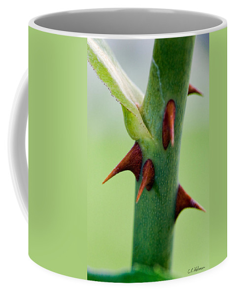 Thorns Coffee Mug featuring the photograph Pointed Personality by Christopher Holmes