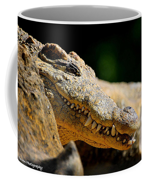 America Crocodile Coffee Mug featuring the photograph Pointy Teeth by Barbara Bowen