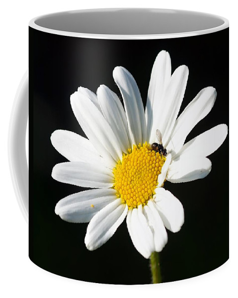 Flower Coffee Mug featuring the photograph Pollen Collection by FL collection