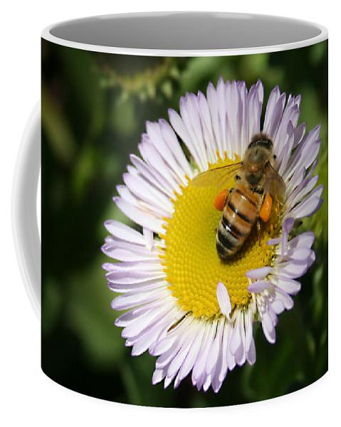 Pollen Harvest Coffee Mug featuring the photograph Pollen Harvest by Ellen Henneke