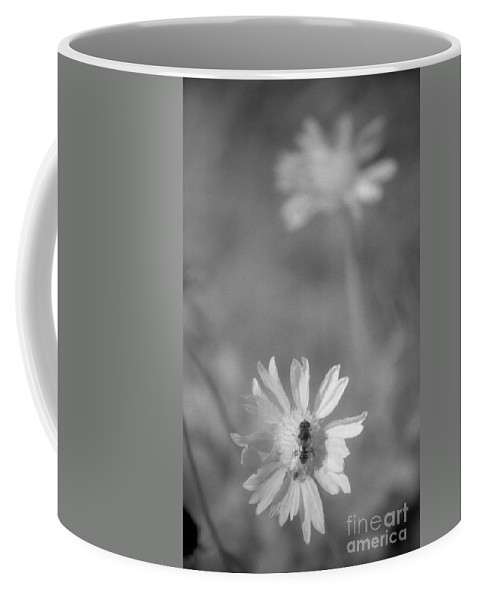 Pollinate Coffee Mug featuring the photograph Pollination by Richard Rizzo
