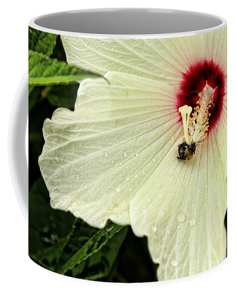 Antenna Coffee Mug featuring the photograph Pollinator by Judy Vincent
