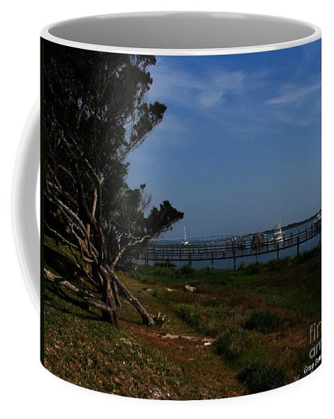 Art For The Wall...patzer Photography Coffee Mug featuring the photograph Ponce De Leon by Greg Patzer