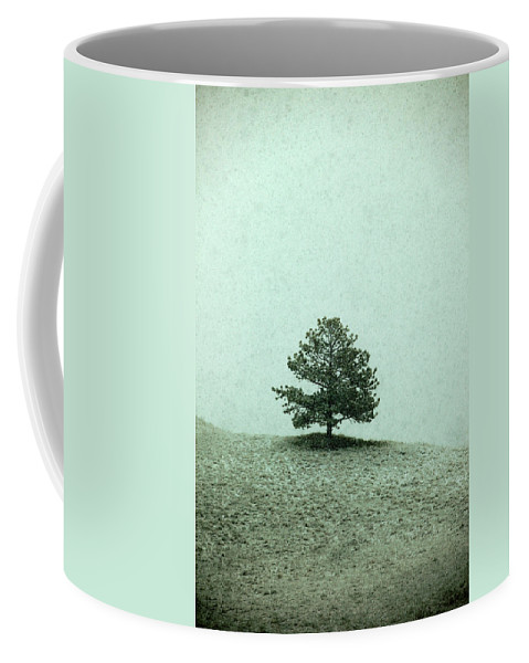 Falling Coffee Mug featuring the photograph Ponderosa Pine by Todd Klassy