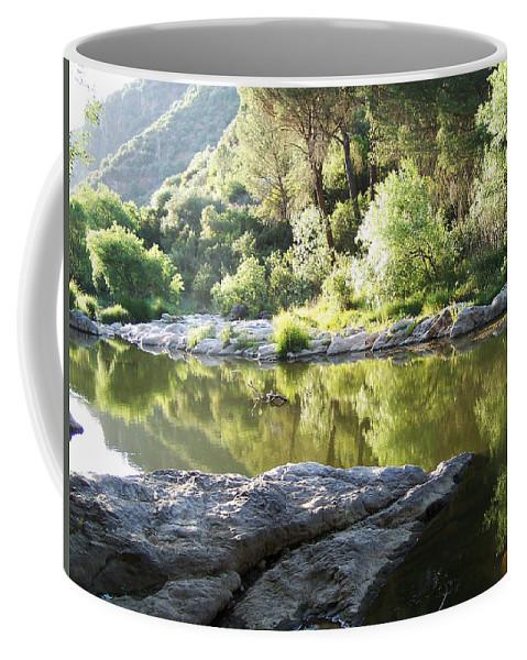 Cordoba Coffee Mug featuring the photograph Popea's Baths by Laura Greco