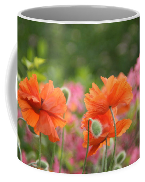 Poppies Coffee Mug featuring the photograph Poppies by Aliza Anderson