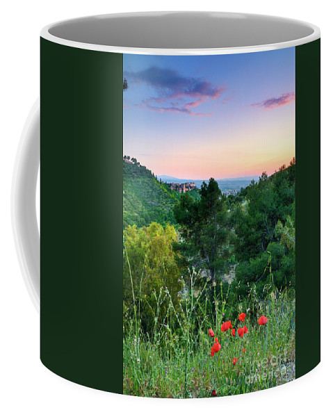 Poppies Coffee Mug featuring the photograph Poppies And The Alhambra Palace by Guido Montanes Castillo