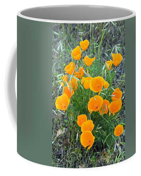 Floral Coffee Mug featuring the photograph Poppies II by Randall Ingalls