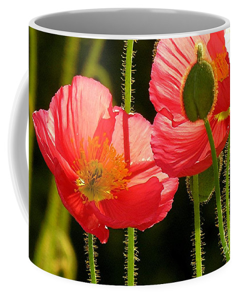 Poppy Coffee Mug featuring the photograph Poppy by Diane Greco-Lesser