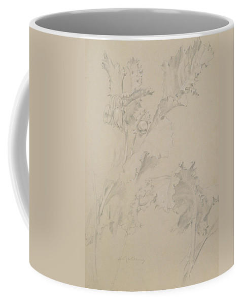 Still-life Coffee Mug featuring the drawing Poppy Leaves by Albert Williams