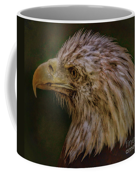 Eagle Coffee Mug featuring the photograph Portrait Of An Eagle by Elizabeth Winter