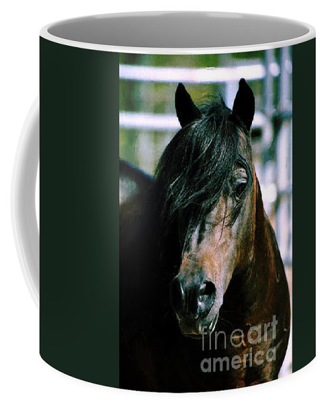 Horse Coffee Mug featuring the photograph Portrait Of His Majesty - The King by Kathy McClure