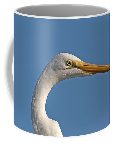 Wildlife Coffee Mug featuring the photograph Posing Heron by Kenneth Albin