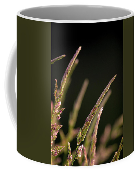 Background Coffee Mug featuring the photograph Poster Grass by Alan Look