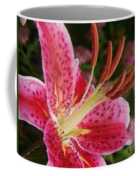 Daylily Coffee Mug featuring the photograph Pow by Priscilla Richardson