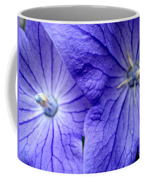 Flowers Coffee Mug featuring the photograph Powder 2 by Nelson F Martinez