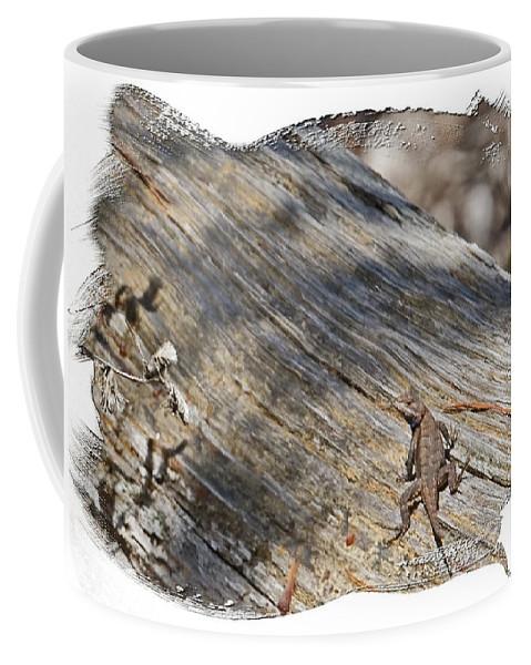 Prairie Lizard Coffee Mug featuring the photograph Prairie Lizard _ 1b by Walter Herrit