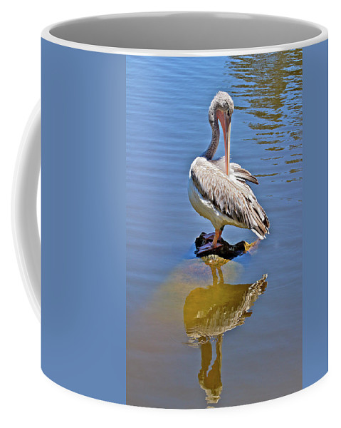 Pelican Coffee Mug featuring the photograph Preening Pelican by Phyllis Denton