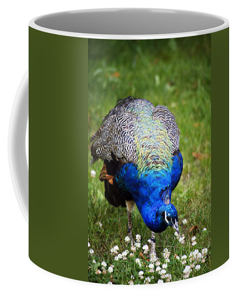 Blue Coffee Mug featuring the photograph Pretty Blue by Marilyn Hunt