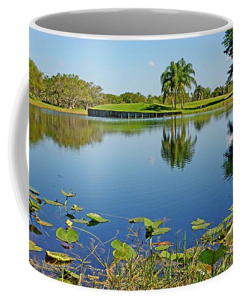 Florida Coffee Mug featuring the photograph Tranquil Lake In Florida by Zalman Latzkovich