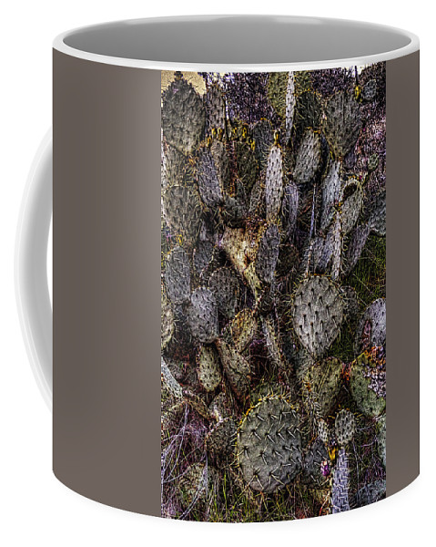 Arizona Coffee Mug featuring the photograph Prickly Pear Cactus At Tonto National Monument by Roger Passman