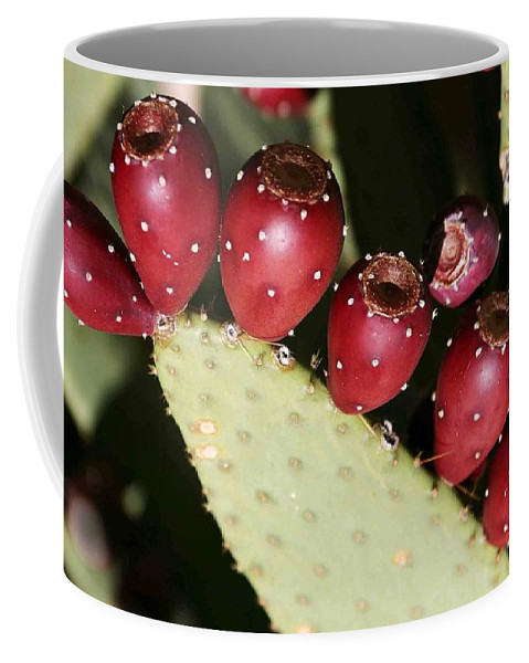 Plant Coffee Mug featuring the photograph Prickly Pear-jerome Arizona by Nelson Strong