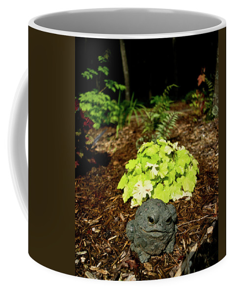 Private Coffee Mug featuring the photograph Private Garden Go Away by Douglas Barnett