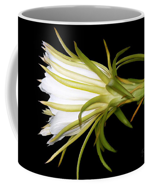 Night Blooming Cereus Coffee Mug featuring the photograph Profile Night Blooming Cereus by Barbara Chichester